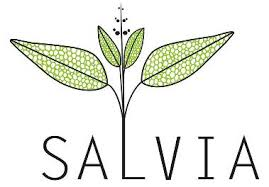 salvia foundation